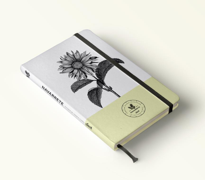 cristina-navarrete_cuaderno